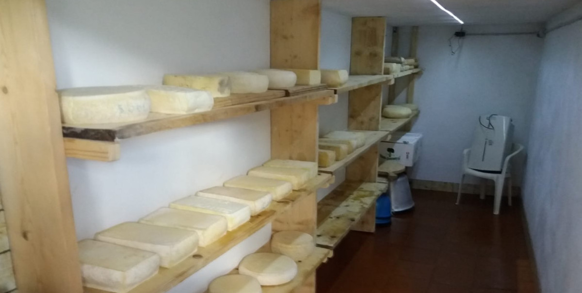 Mondo Attività: Malga con camere e ristorante in provincia di Belluno(2)