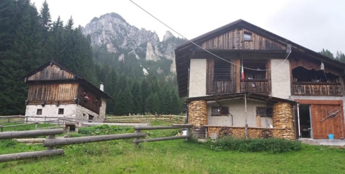 Mondo Attività: Malga con camere e ristorante in provincia di Belluno(6)