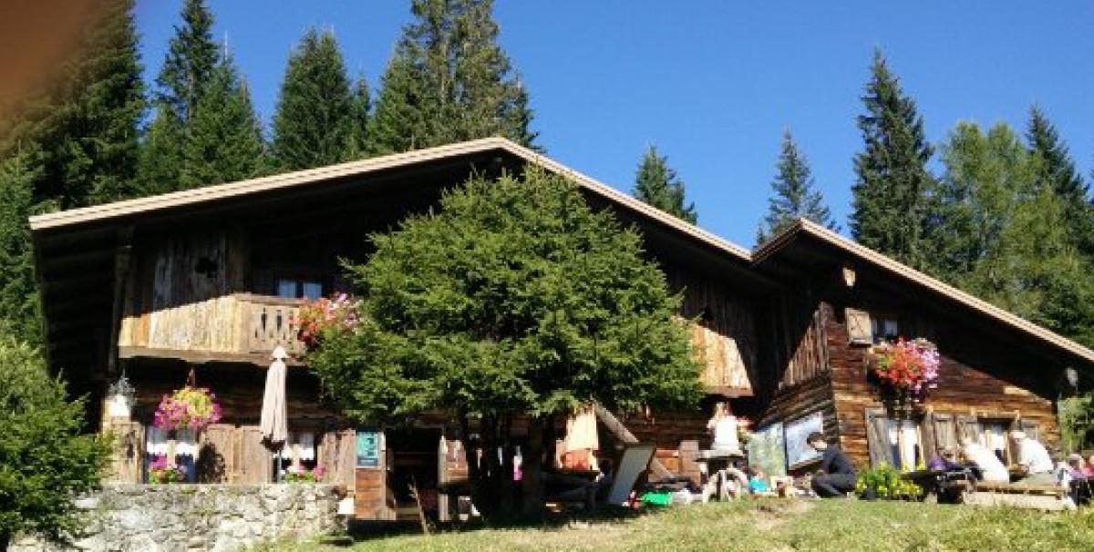 Mondo Attività: Malga con camere e ristorante in provincia di Belluno(8)